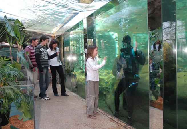 aquarium du perigord noir parc attraction aquariums le bugue 24260 les attractions