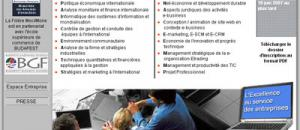 Master Management des Organisations