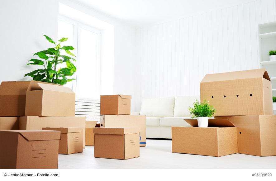 Costockage, le bon plan pour gérer petite surface et sous-location