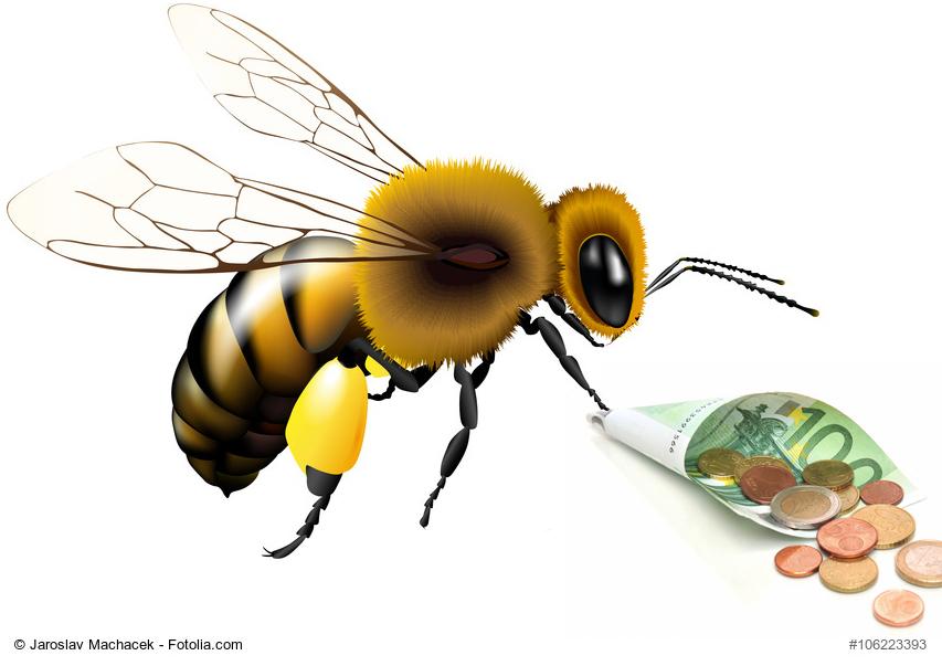 Avez vous une idée du montant du salaire annuel d'une abeille?