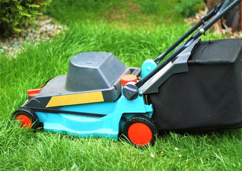 Travailler dans les services la personne petits for Travaux de jardinage