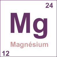 LES SELS MINÉRAUX Magnesium